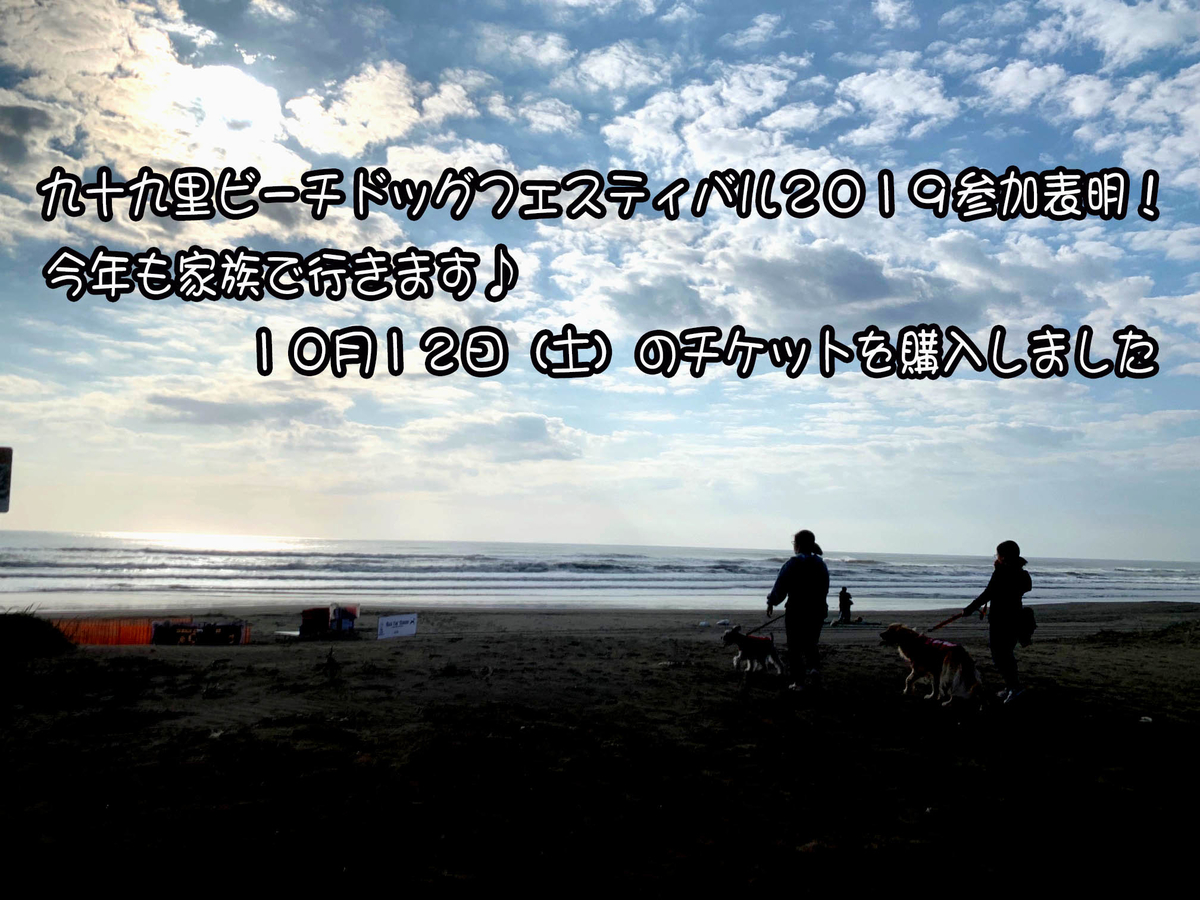 f:id:ysnyn658:20191003183632j:plain