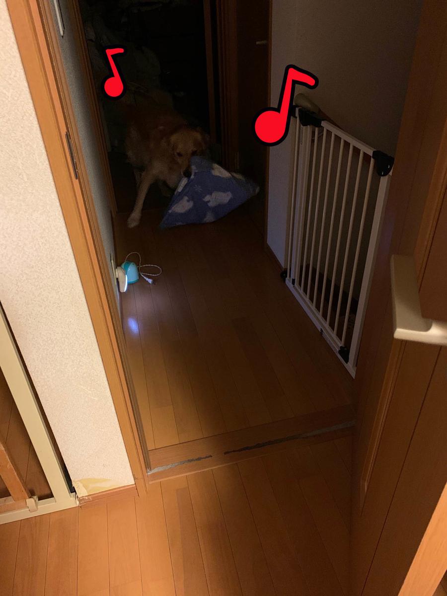 f:id:ysnyn658:20191107214640j:plain