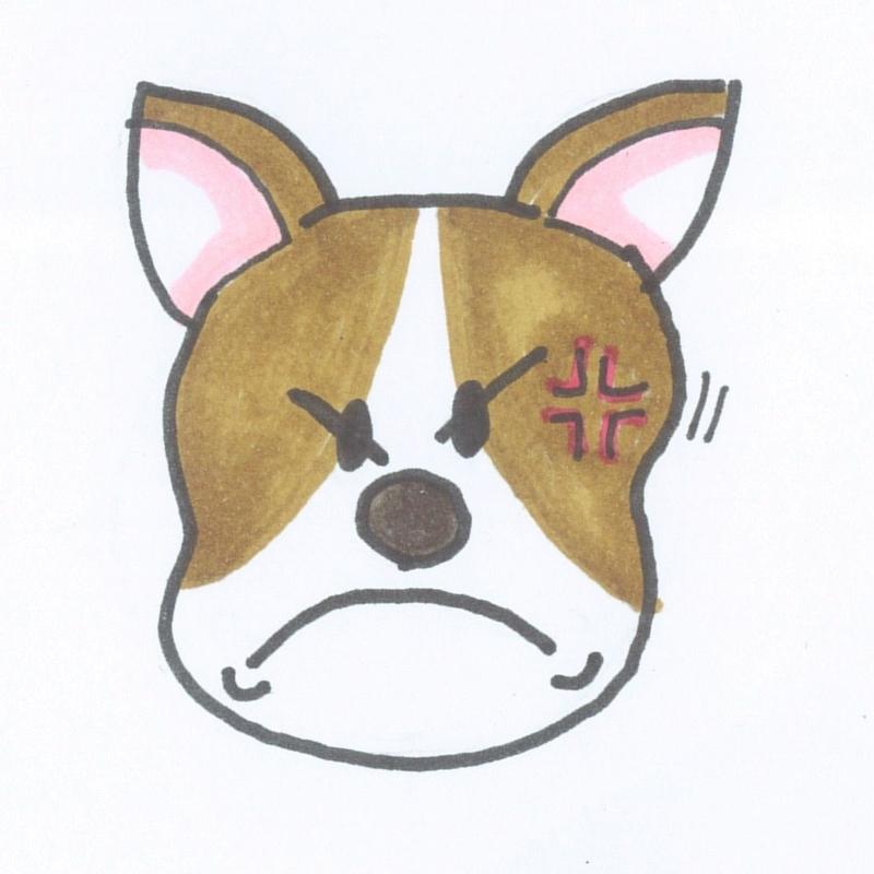 dog_angry