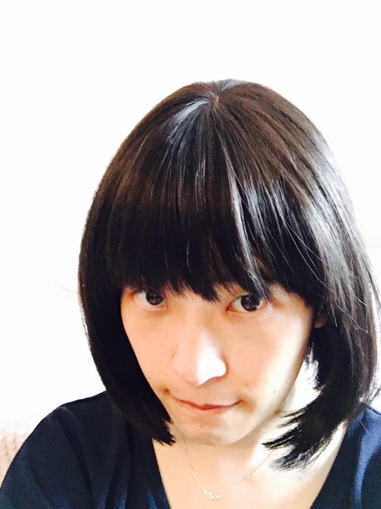 f:id:ytomiyama:20170704092841j:plain