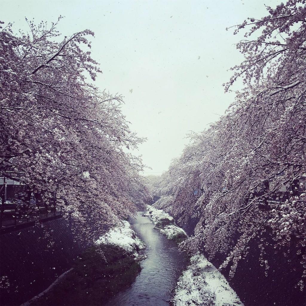 f:id:ytomiyama:20200401201149j:image