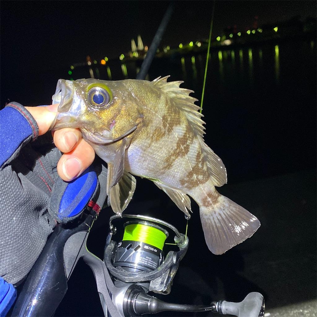 f:id:yu-kin-fishing:20200313104242j:image