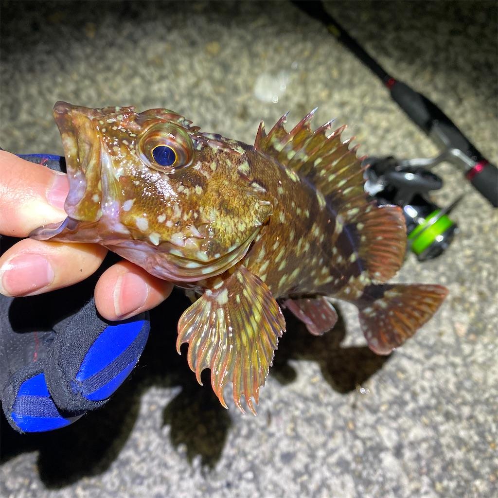 f:id:yu-kin-fishing:20200313112837j:image