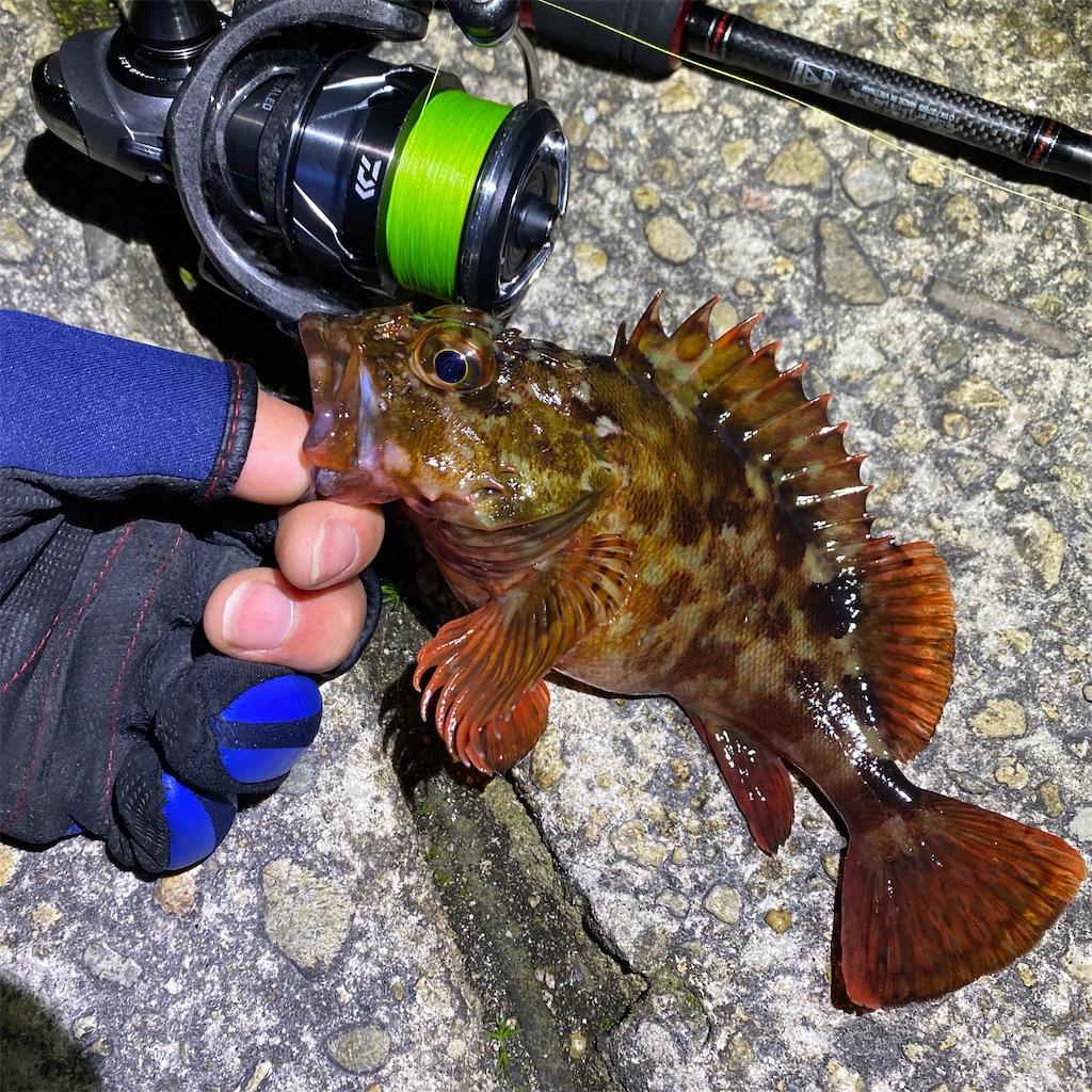 f:id:yu-kin-fishing:20200313112850j:plain