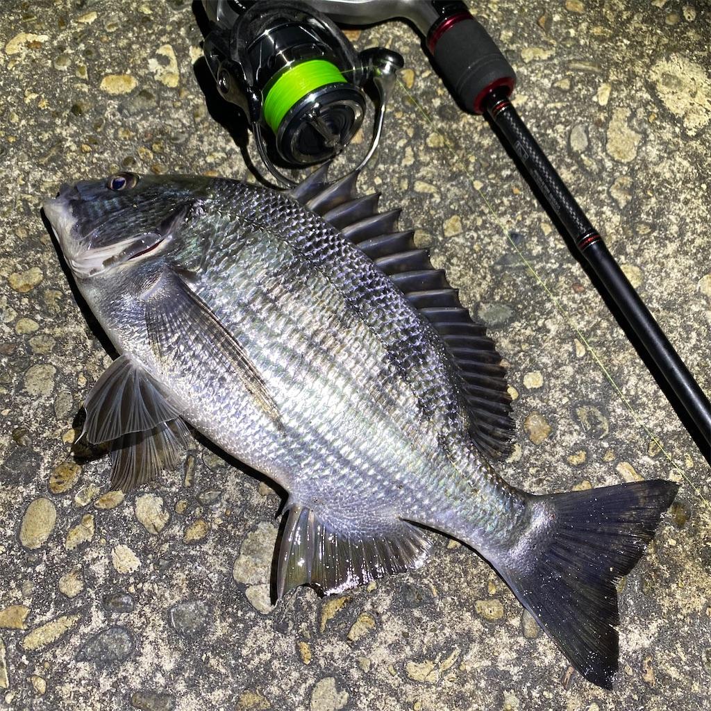 f:id:yu-kin-fishing:20200315023003j:image