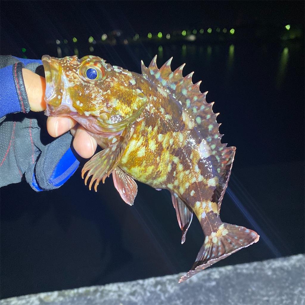 f:id:yu-kin-fishing:20200326215537j:image