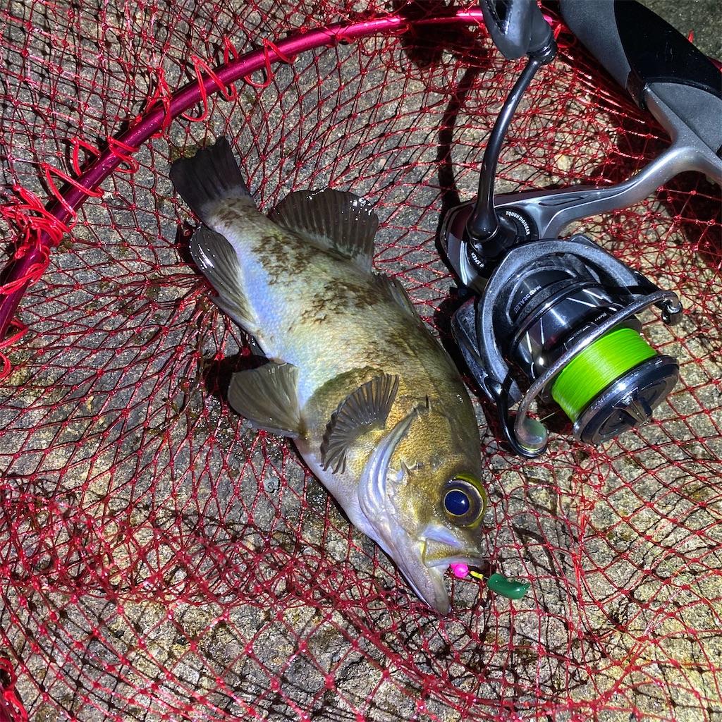 f:id:yu-kin-fishing:20200612234240j:image