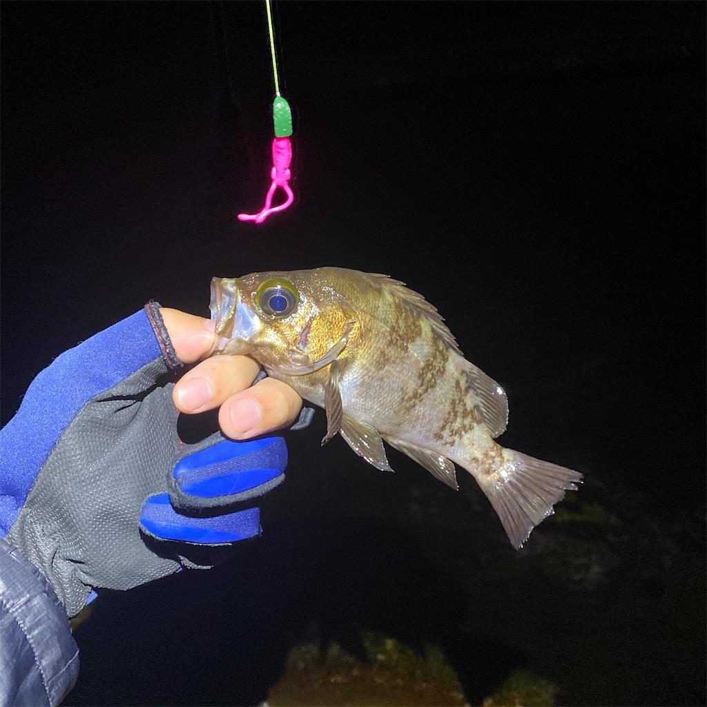 f:id:yu-kin-fishing:20200617091923j:image