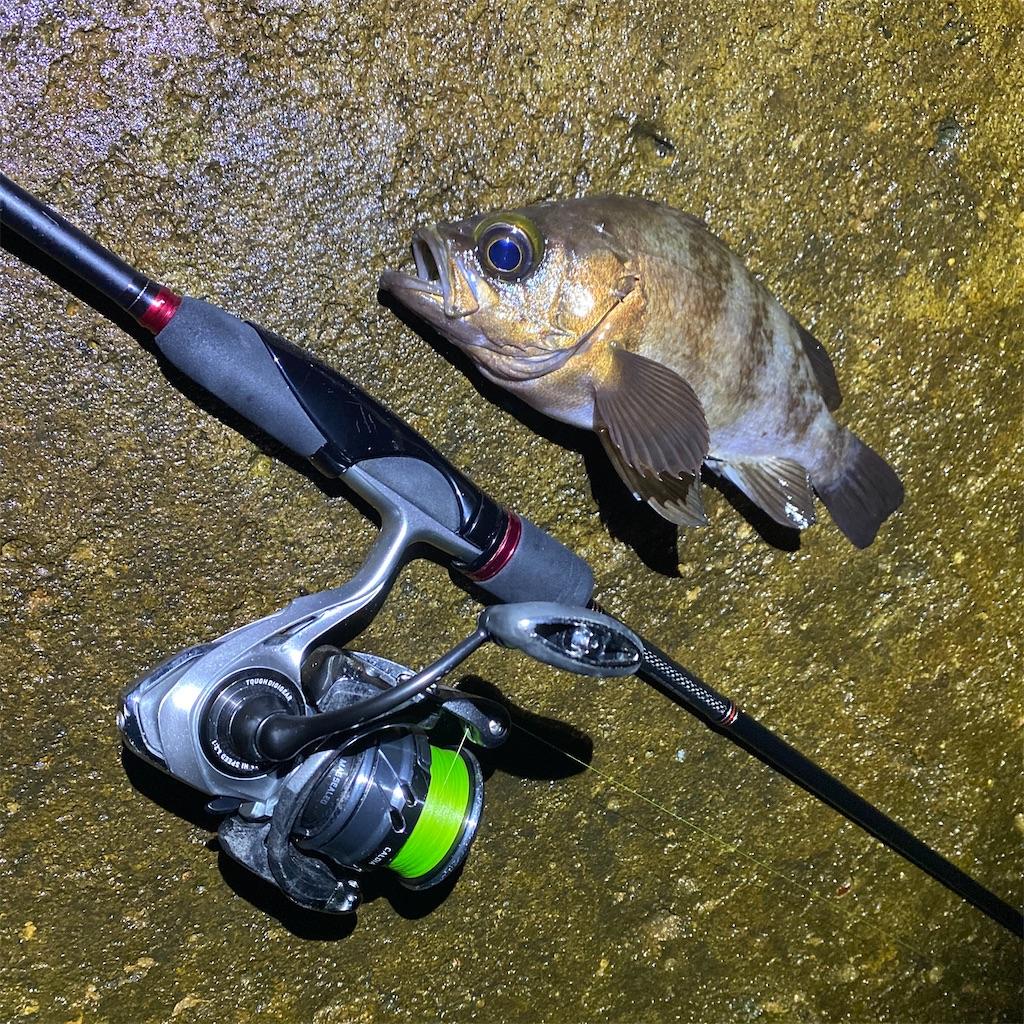 f:id:yu-kin-fishing:20200619002619j:image
