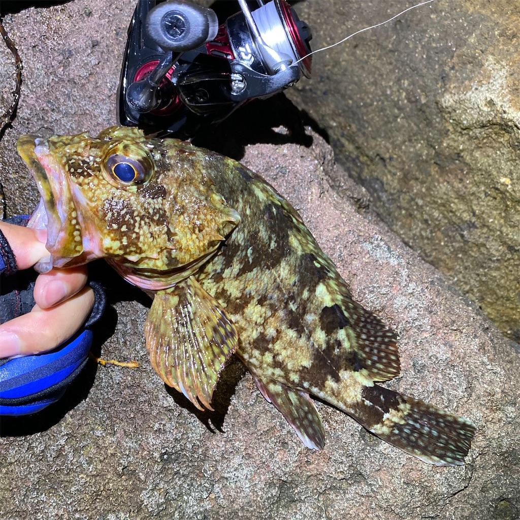 f:id:yu-kin-fishing:20200628233334j:image