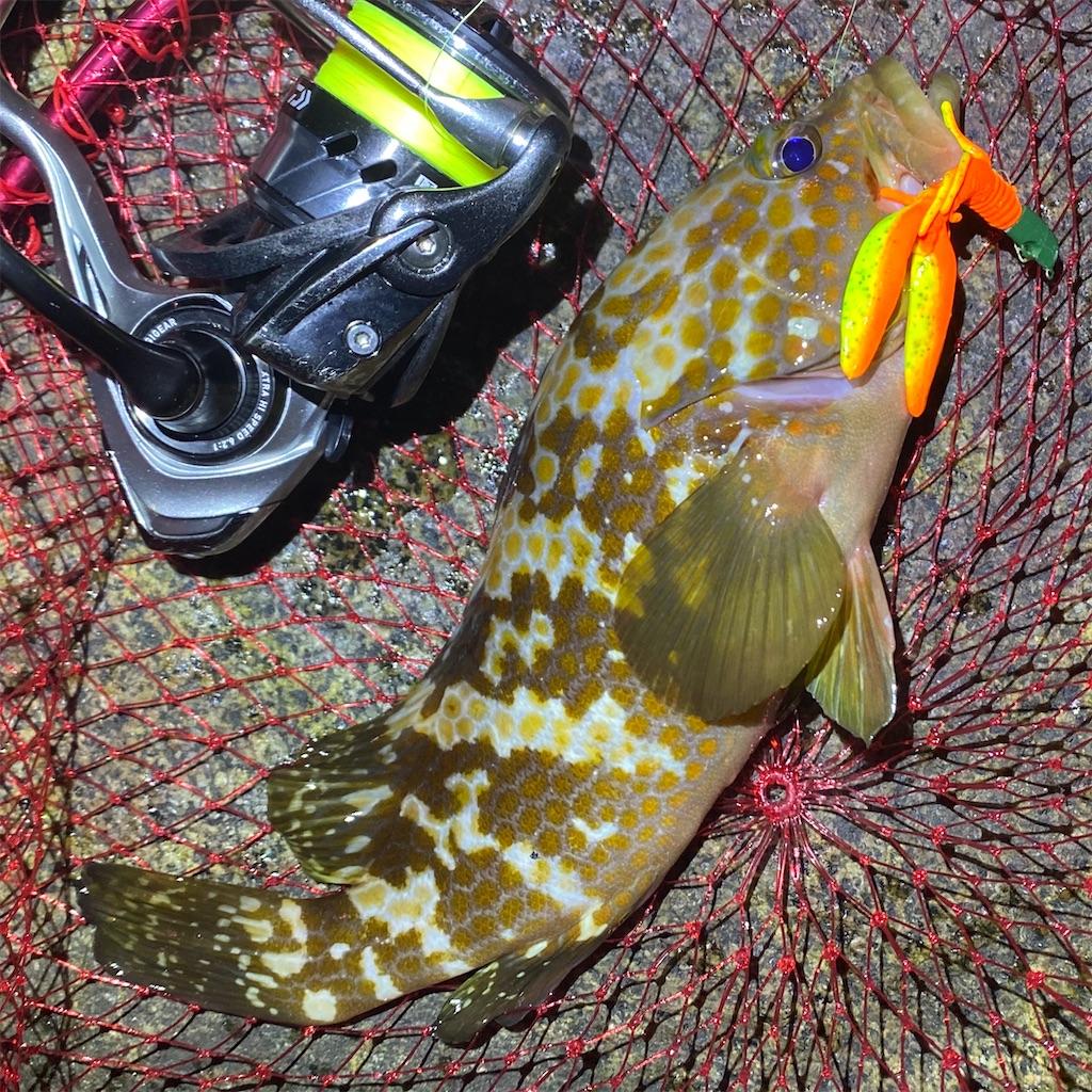 f:id:yu-kin-fishing:20200821084732j:image