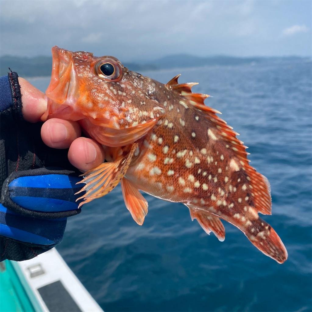 f:id:yu-kin-fishing:20200822205315j:image