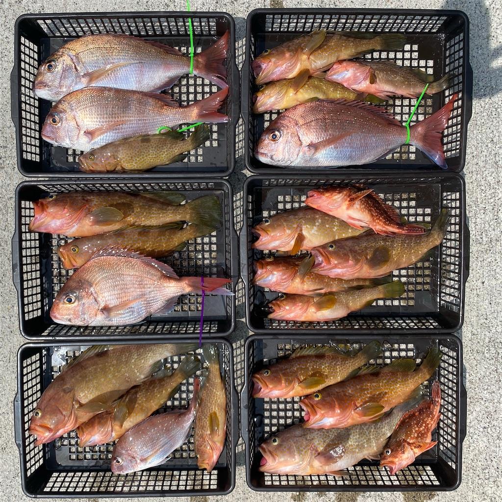 f:id:yu-kin-fishing:20200822205353j:image
