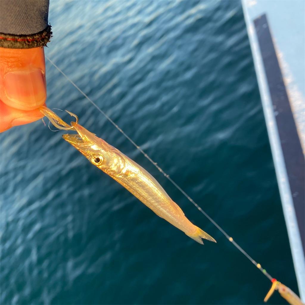 f:id:yu-kin-fishing:20200830192012j:image
