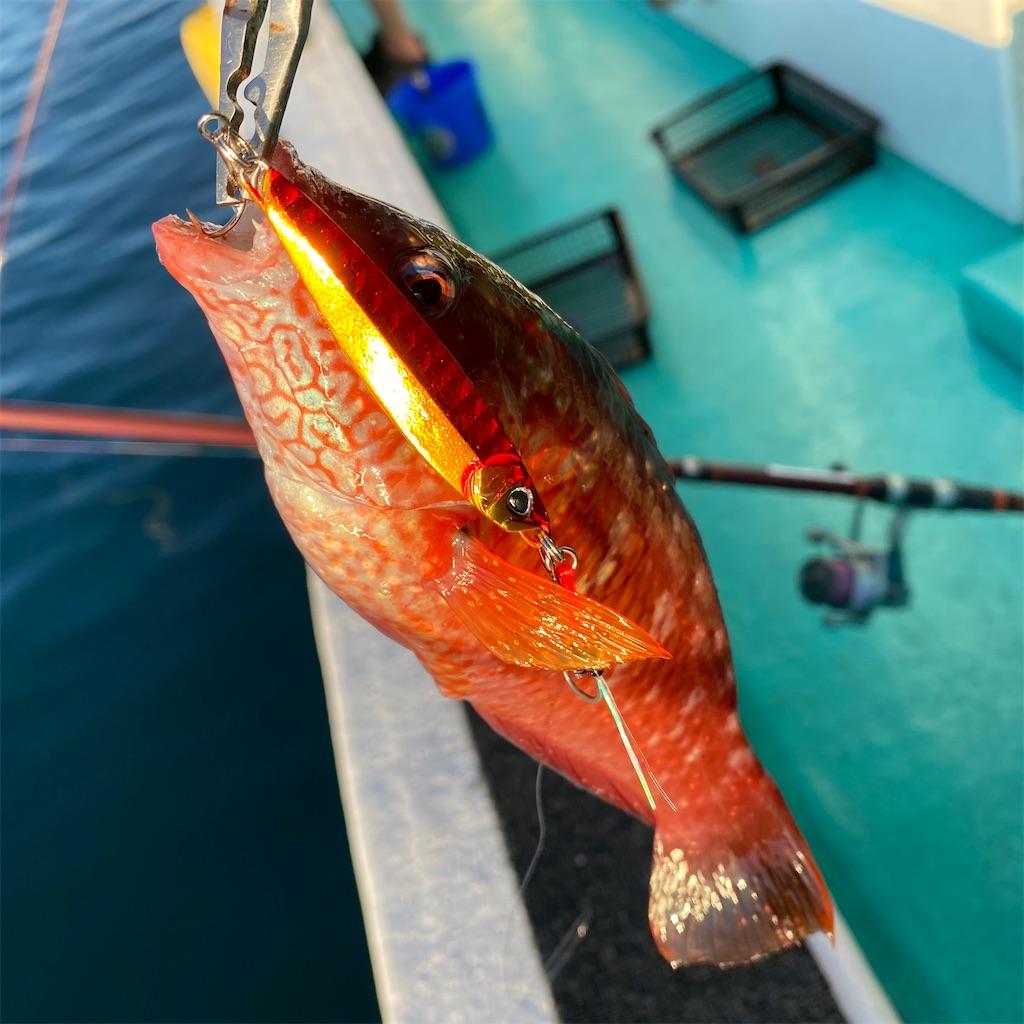 f:id:yu-kin-fishing:20200830192034j:image