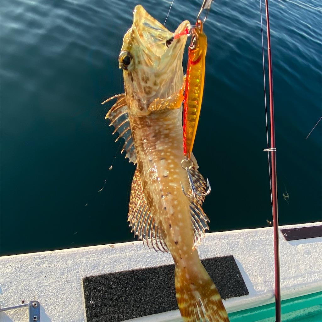 f:id:yu-kin-fishing:20200830192039j:image
