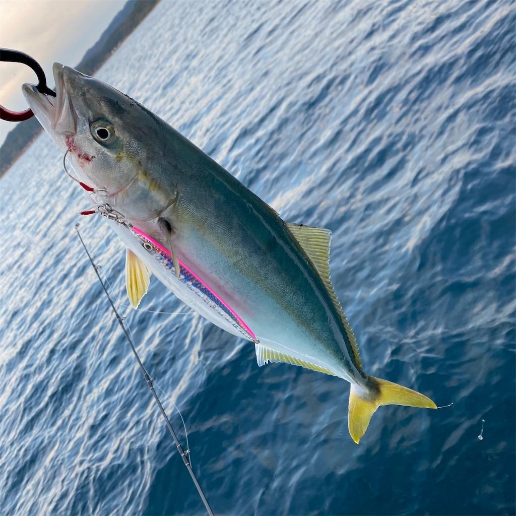 f:id:yu-kin-fishing:20201101180236j:image
