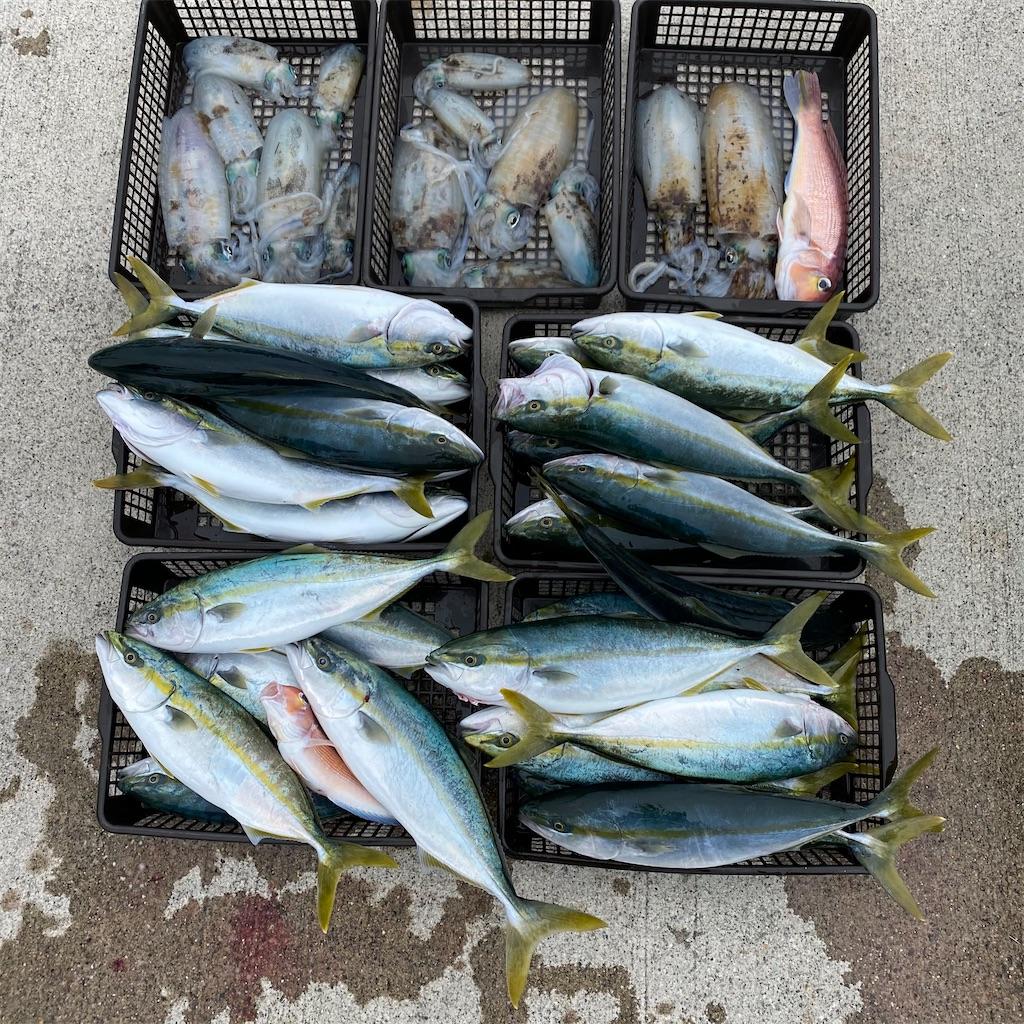 f:id:yu-kin-fishing:20201101180632j:plain