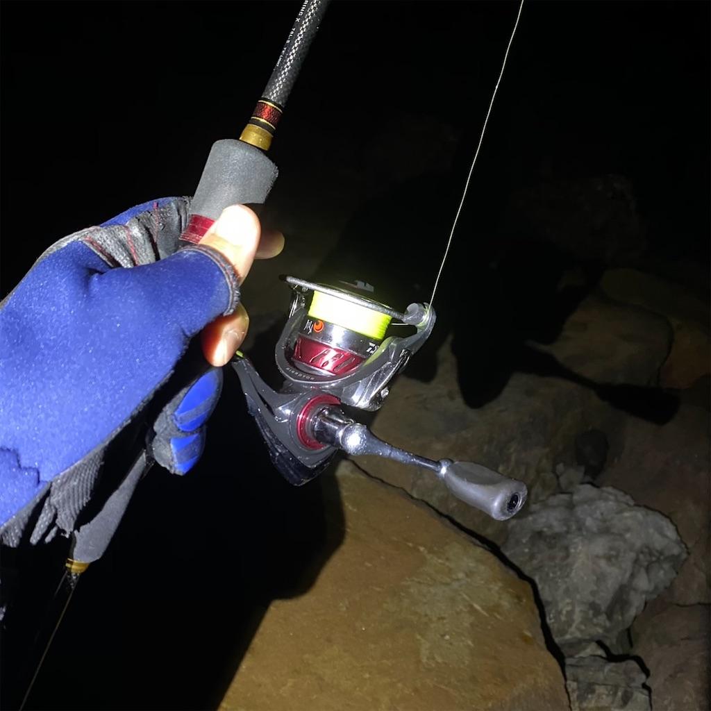 f:id:yu-kin-fishing:20201109082253j:image