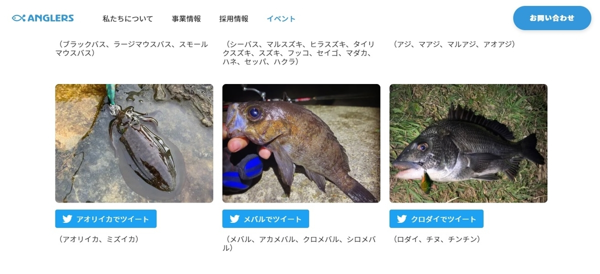 f:id:yu-kin-fishing:20210106205240j:plain
