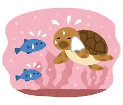 f:id:yu-kin-fishing:20210202163304p:plain