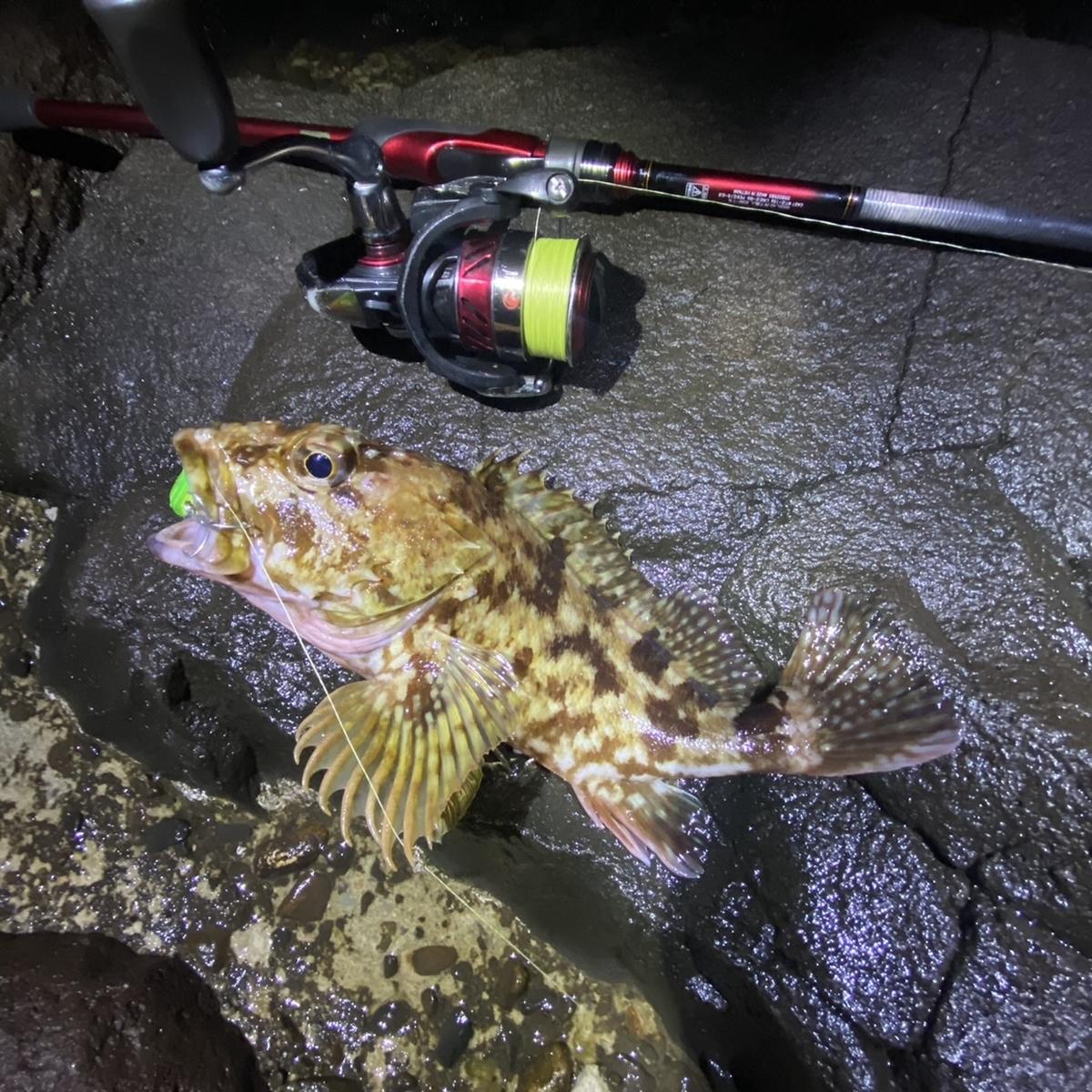 f:id:yu-kin-fishing:20210221181454j:plain