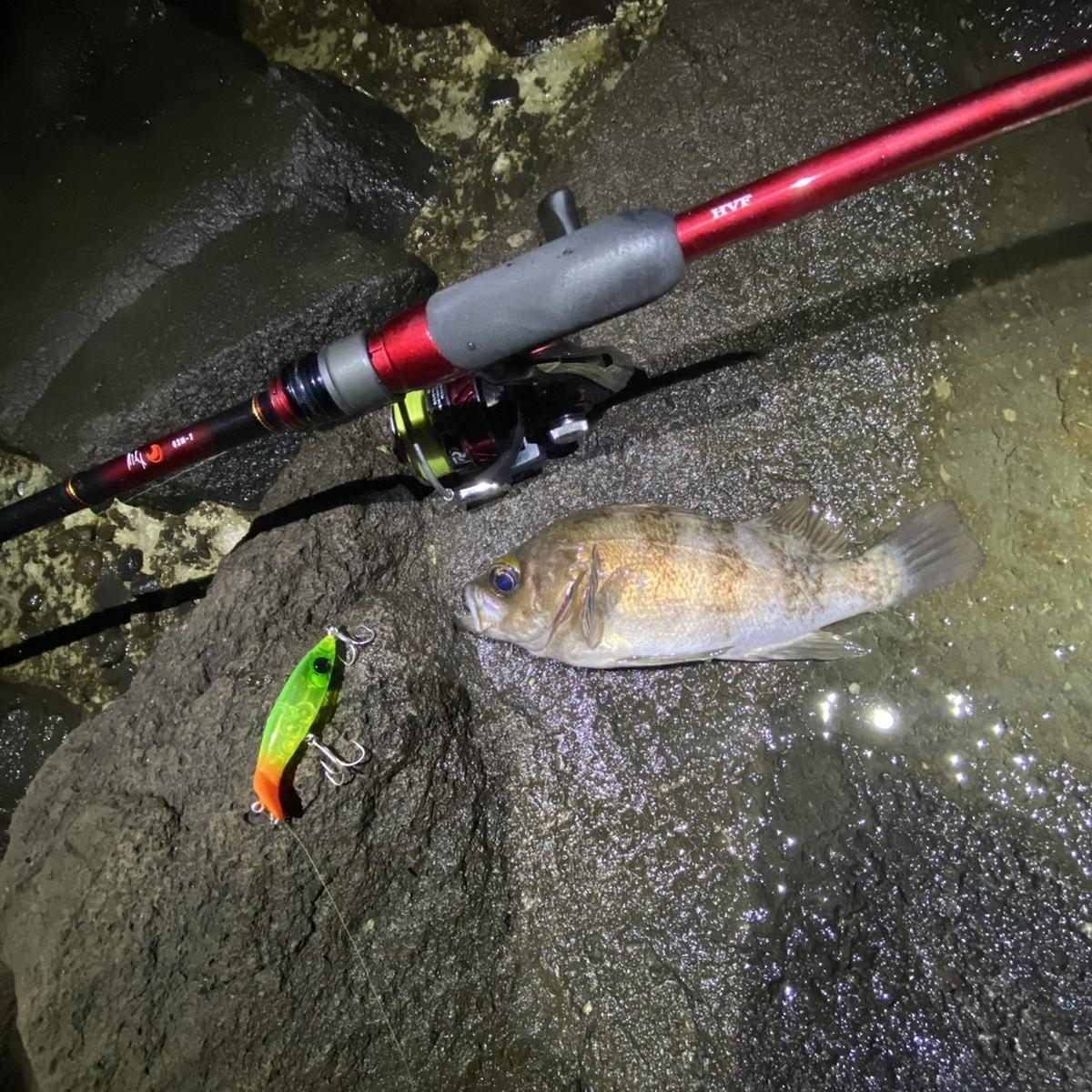f:id:yu-kin-fishing:20210221181508j:plain