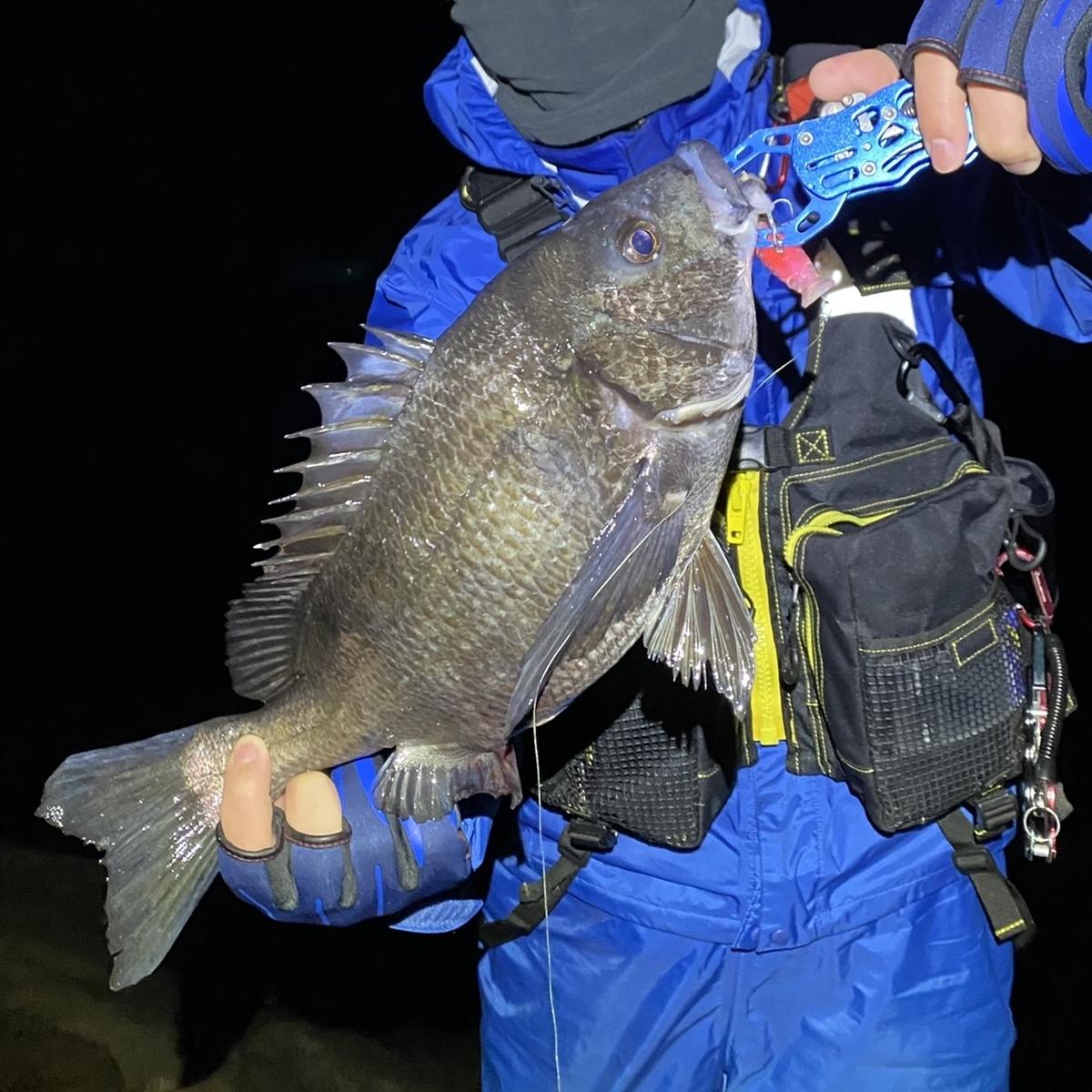 f:id:yu-kin-fishing:20210313104326j:plain