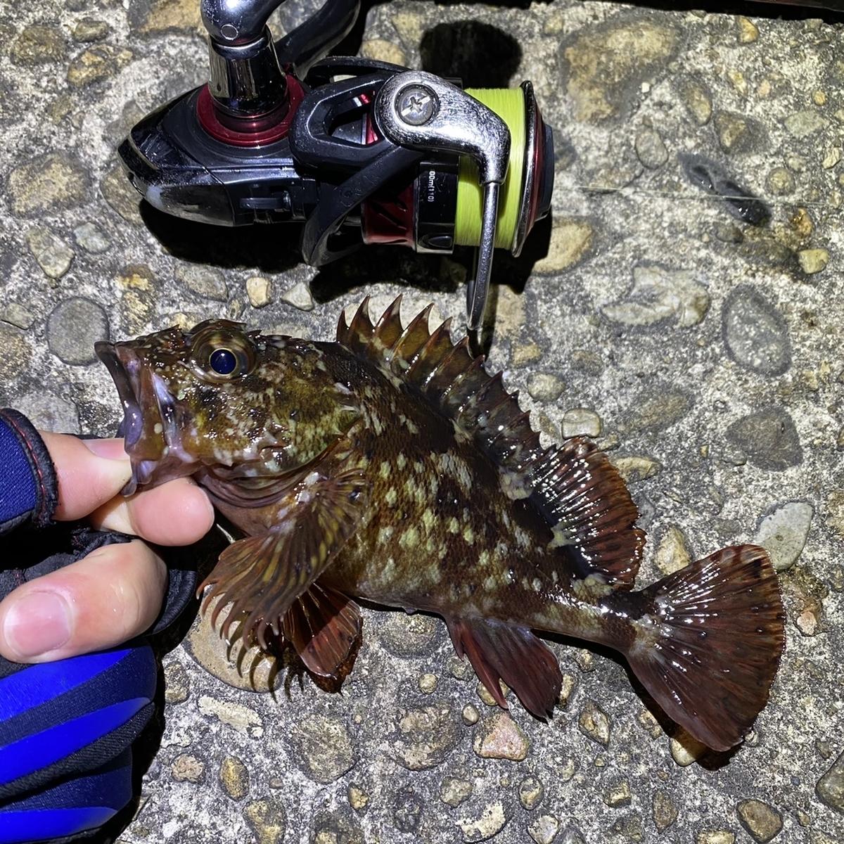 f:id:yu-kin-fishing:20210329114842j:plain