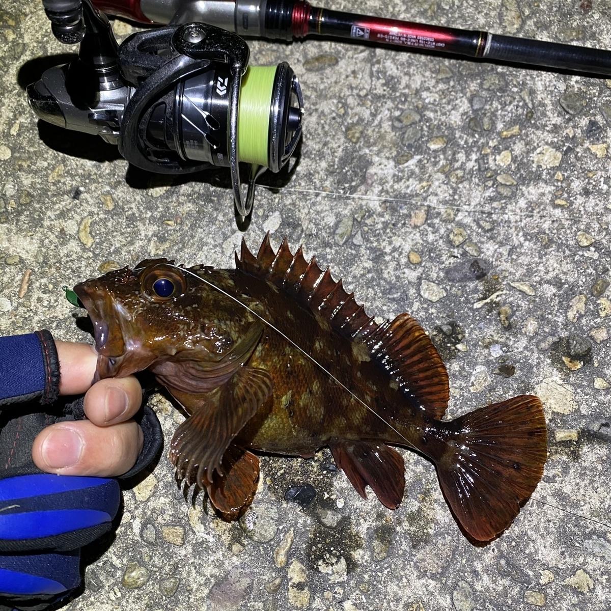 f:id:yu-kin-fishing:20210408202843j:plain