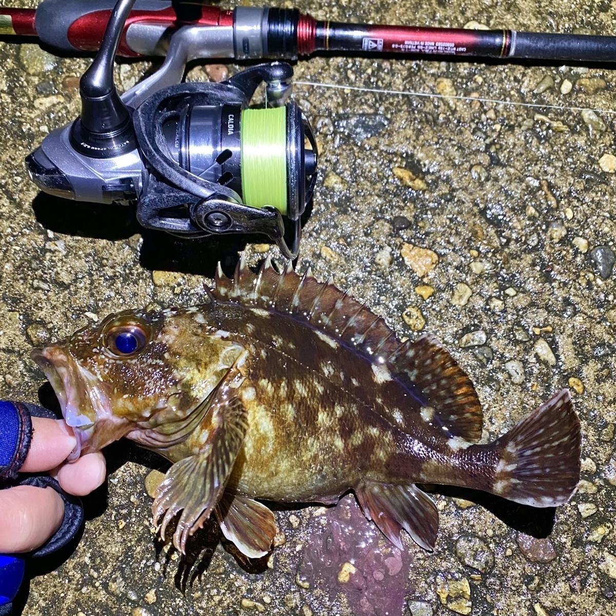 f:id:yu-kin-fishing:20210418180941j:plain