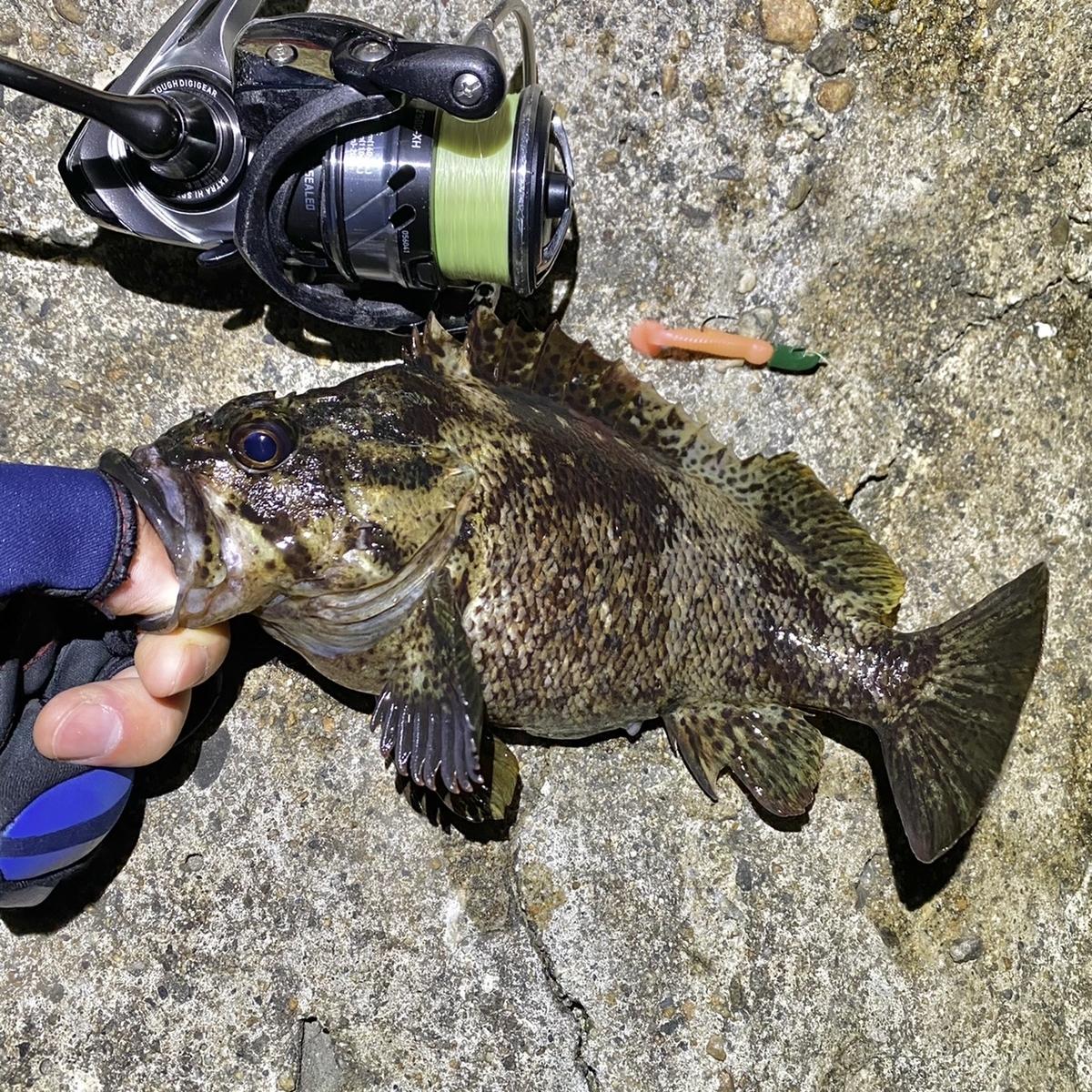 f:id:yu-kin-fishing:20210425111738j:plain