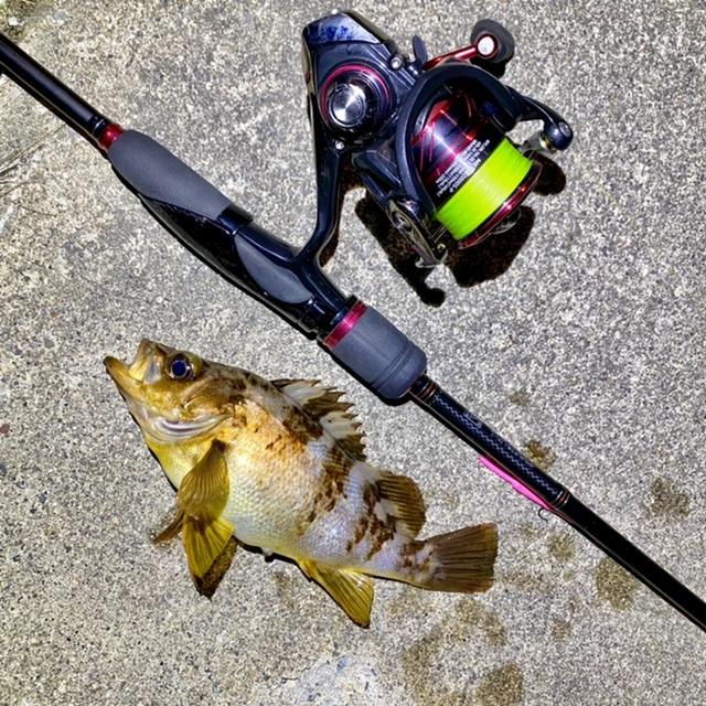 f:id:yu-kin-fishing:20210513124122j:plain