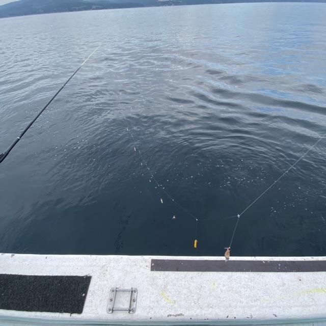 f:id:yu-kin-fishing:20210613113344j:plain
