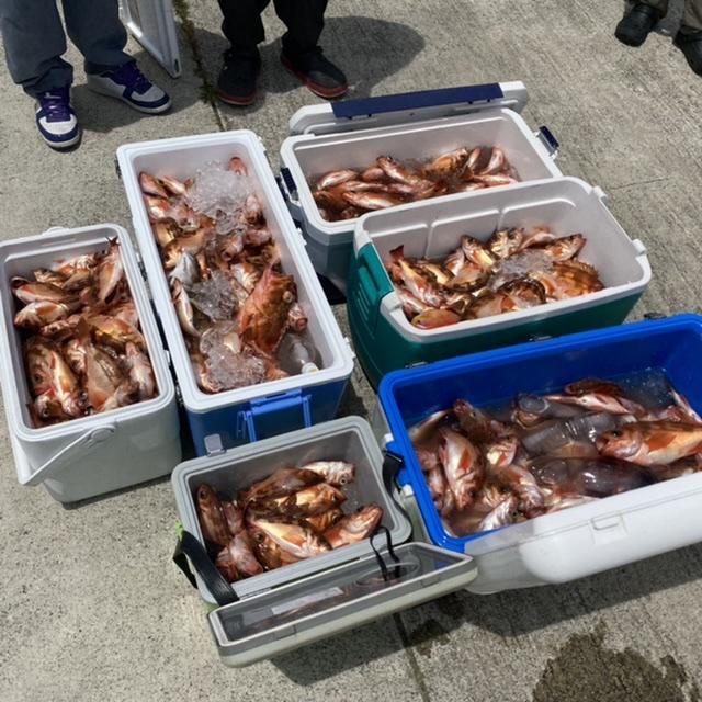 f:id:yu-kin-fishing:20210613113431j:plain