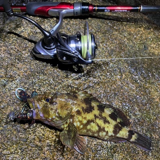 f:id:yu-kin-fishing:20210703093158j:plain