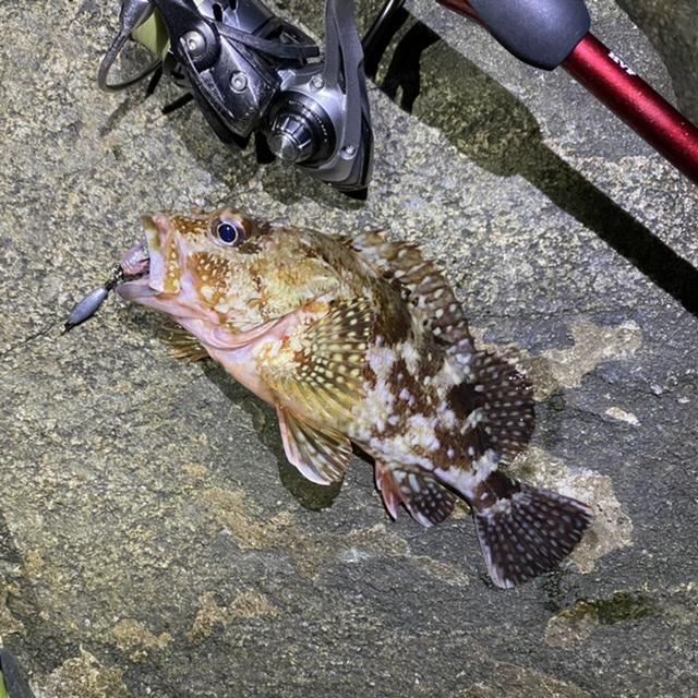 f:id:yu-kin-fishing:20210714193955j:plain