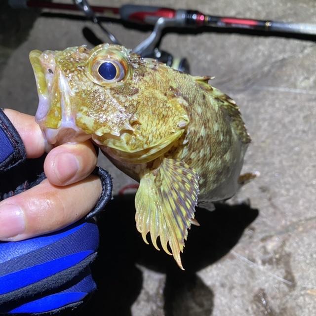 f:id:yu-kin-fishing:20210805091203j:plain