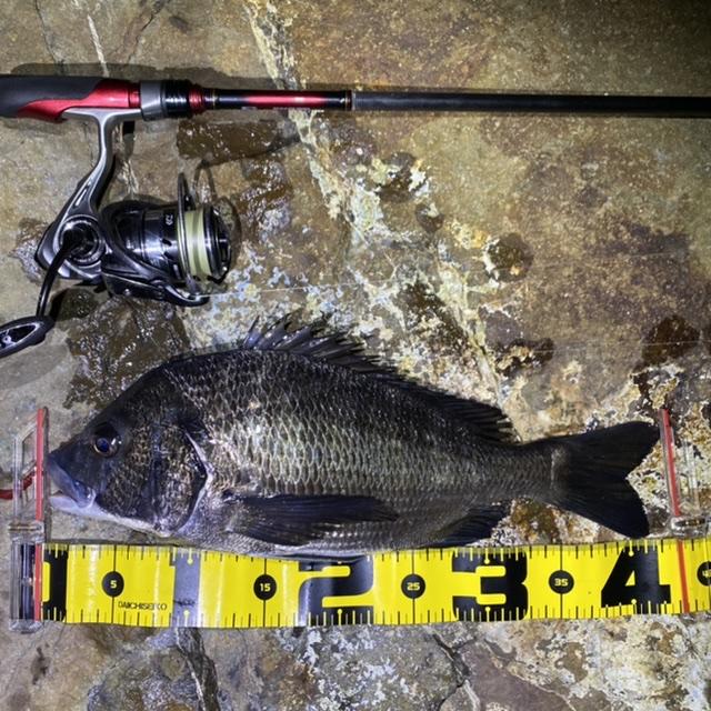 f:id:yu-kin-fishing:20210805091234j:plain