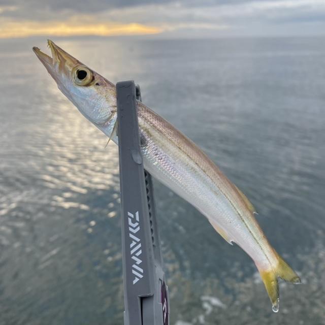 f:id:yu-kin-fishing:20210907121659j:plain