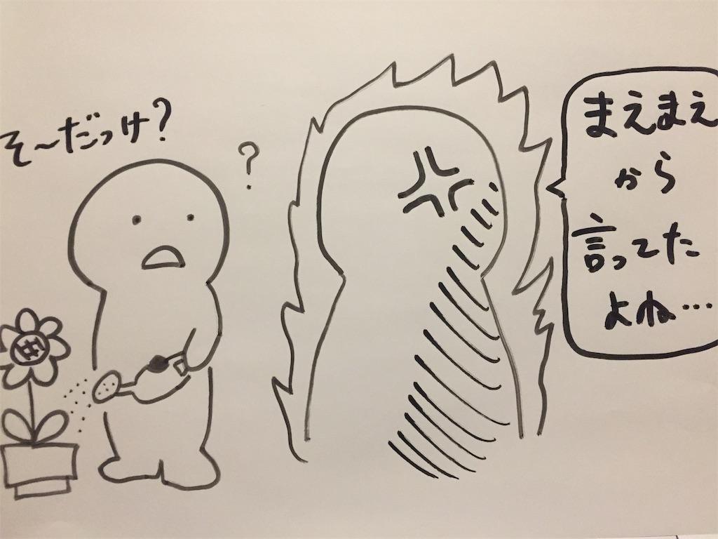f:id:yu-totto:20190510223804j:image