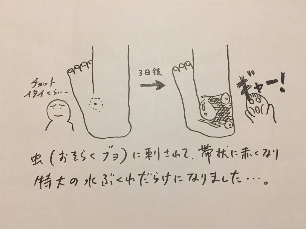 f:id:yu-totto:20190518212019j:image