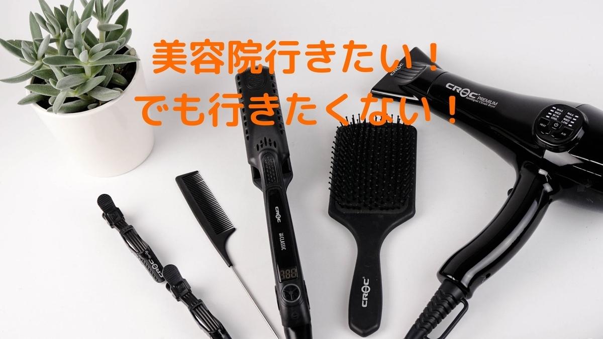 f:id:yu-zu_ki:20200604214629j:plain