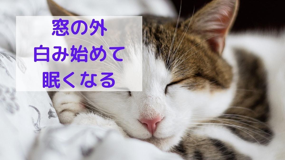 f:id:yu-zu_ki:20200607191651j:plain
