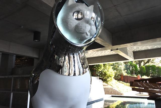 不思議な巨大猫