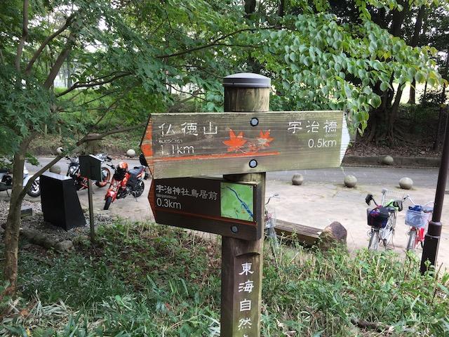 登り口付近の矢印