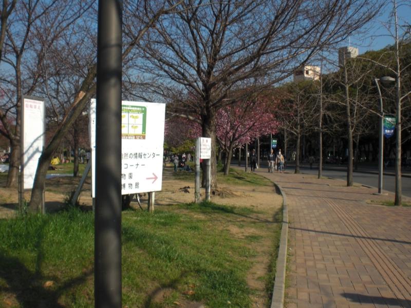 f:id:yu7news:20170501000822j:plain