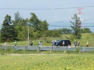 当別スウェーデンマラソン・ひまわり畑写真