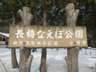 長橋なえぼ公園写真