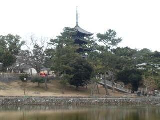猿沢池・興福寺五重塔写真